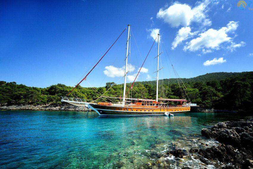 Deniz Felix Balina Gulet 05